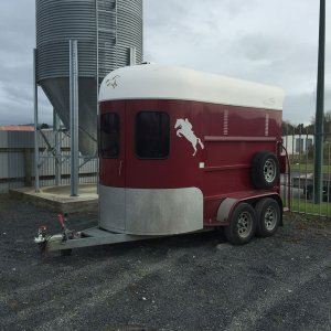 Twin-horse-float-for-hire-good-guys-hire-otorohanga